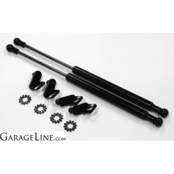 Garage Line 2013+ Ford Focus ST Hood Strut Kit